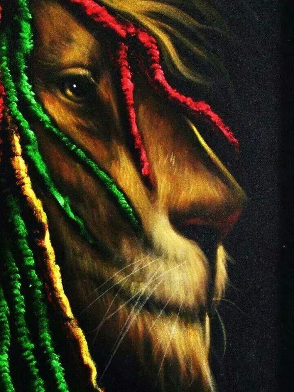 Lion of Judah   Яᗩs ᗩfᗩr-I ♫ ☮   Pinterest   Lions, Bob ...
