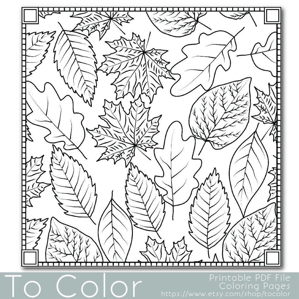 Autumn Leaves Coloring Page For Grown Ups