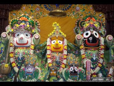 Image result for photos of jagannath swamy in chennai