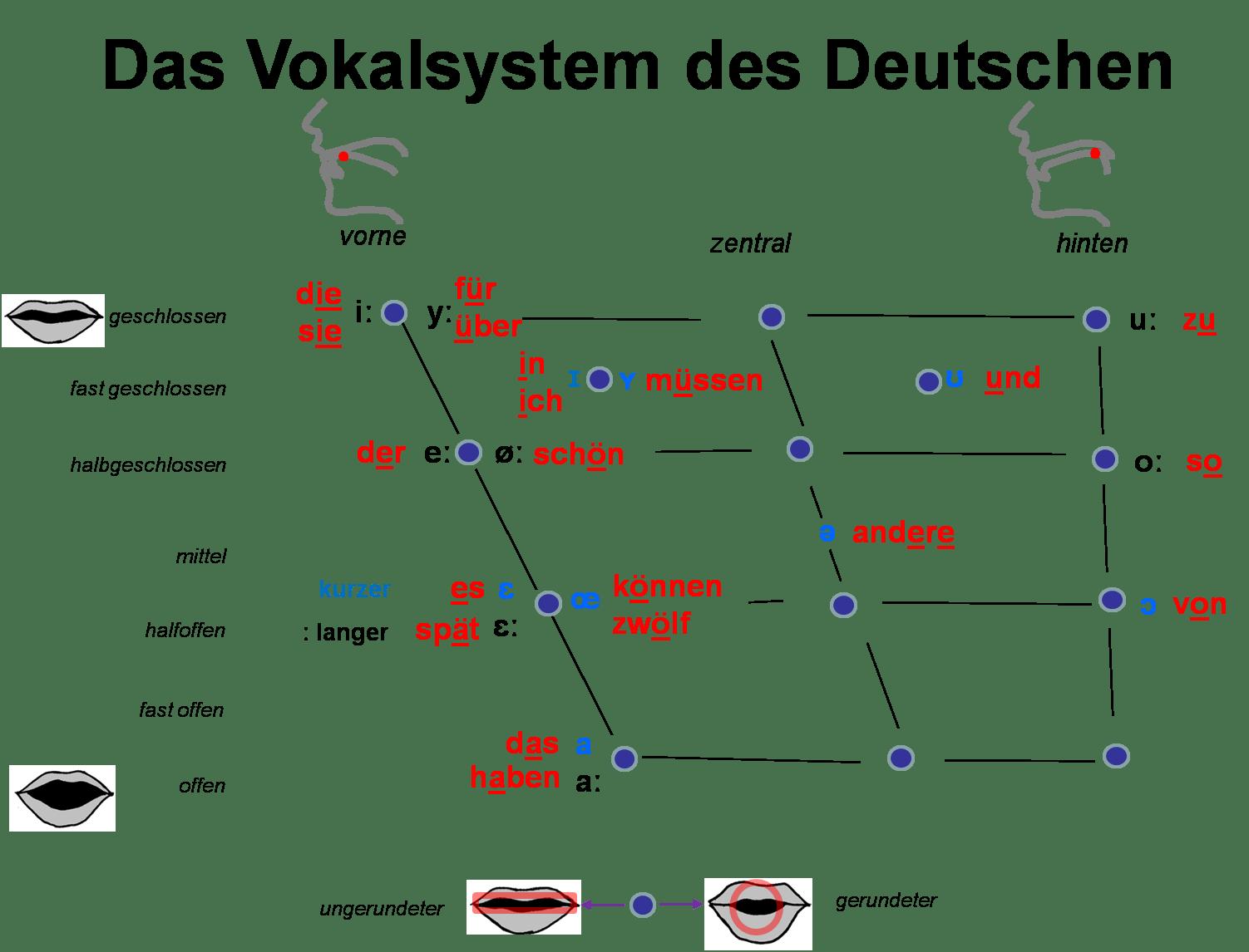 Das Vokalsystem Des Deutschen