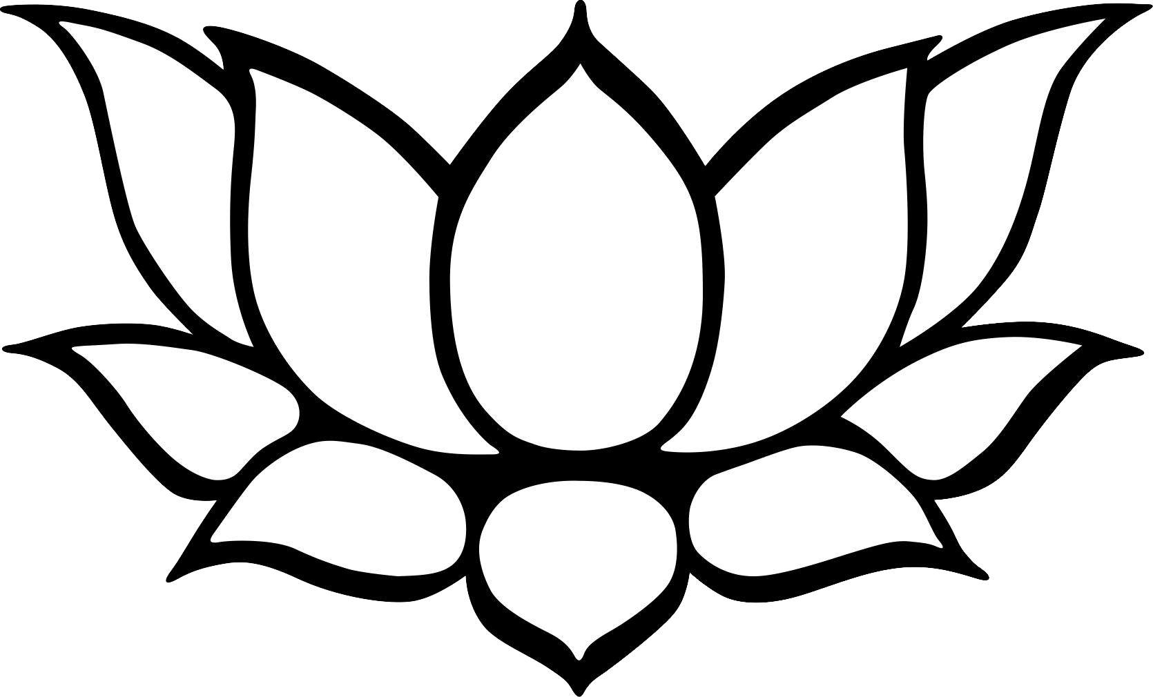Lotus Line Drawing