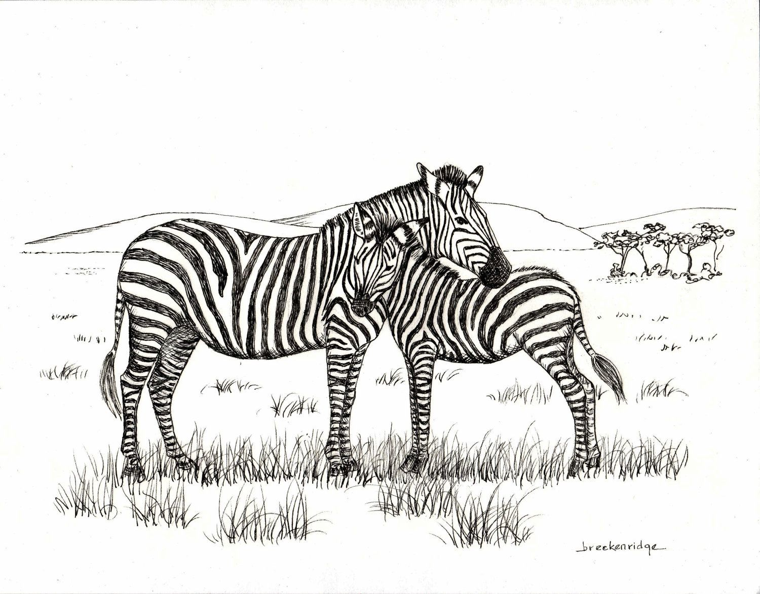 Mother And Baby Zebra Drawing Print 15 00 Via Etsy
