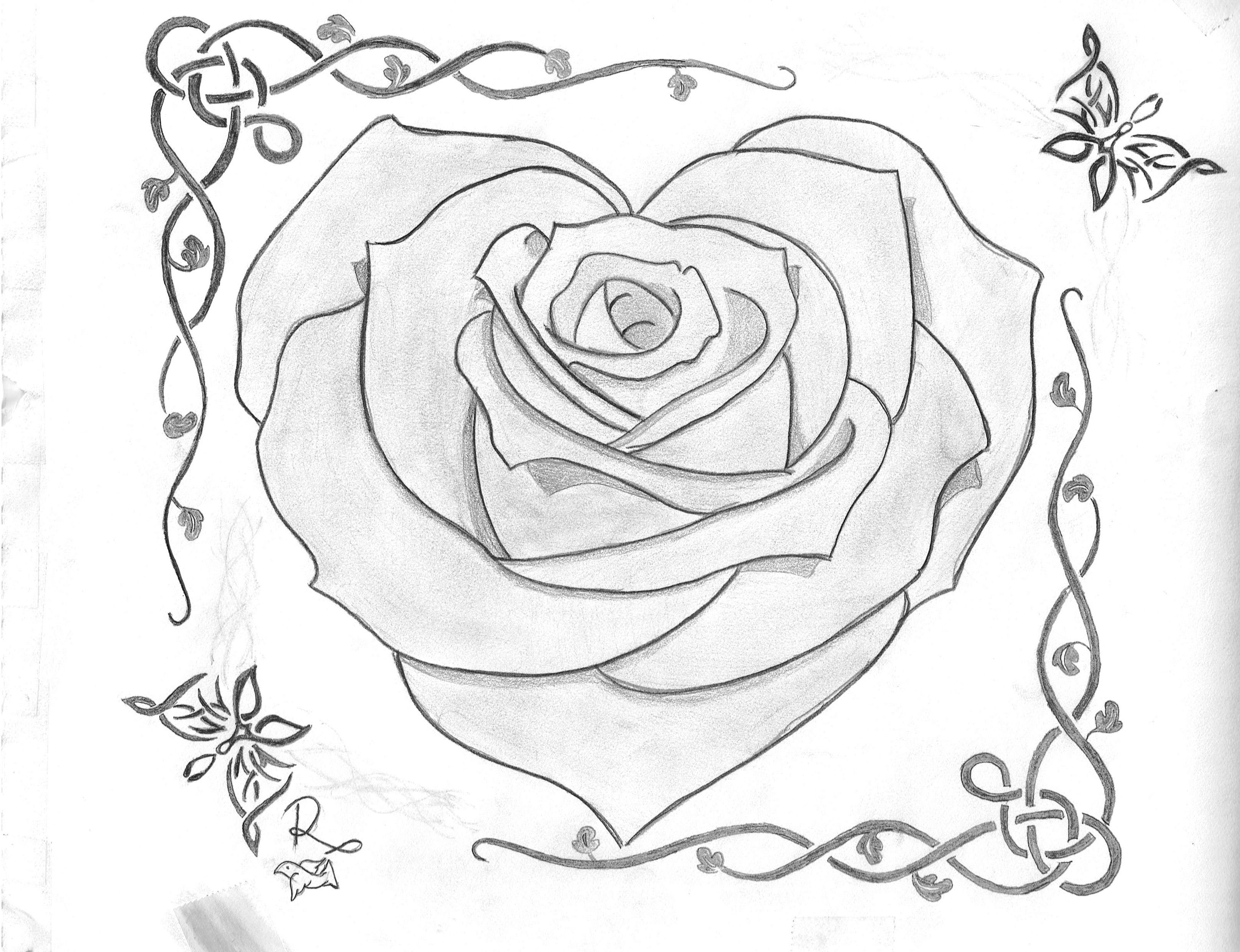 Rose Heart B Amp W Sketch