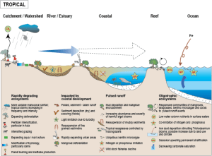 Ecosystem Diagram | Tropical Coastal Ecosystem & Habitat Diagrams | Ecosystems (systems thinking