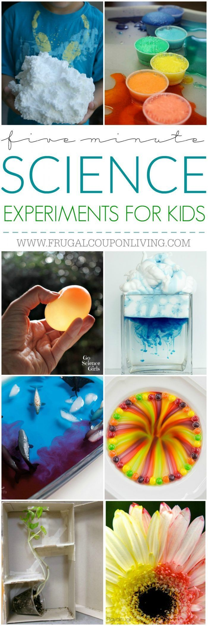 5 Minute Science Experiments for Kids and Busy Moms on Frugal Coupon Living. Geometric Bubbles, Glow in the Dark Volcanoes,
