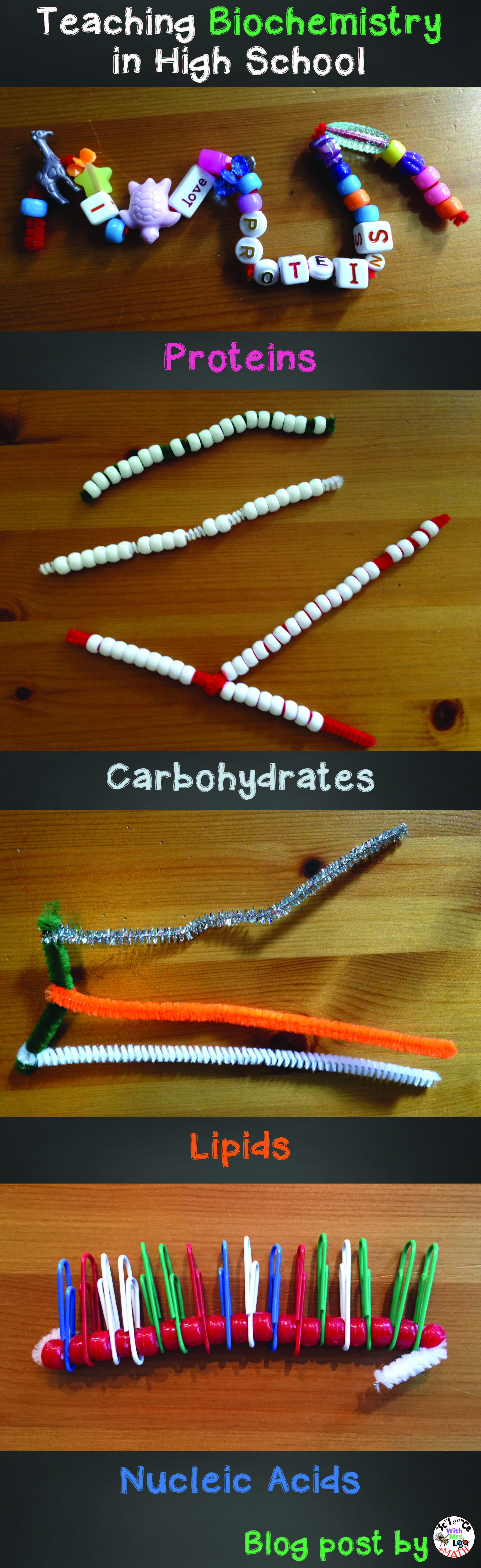 Molecular Models Science Teachers Can Use To Show Proteins