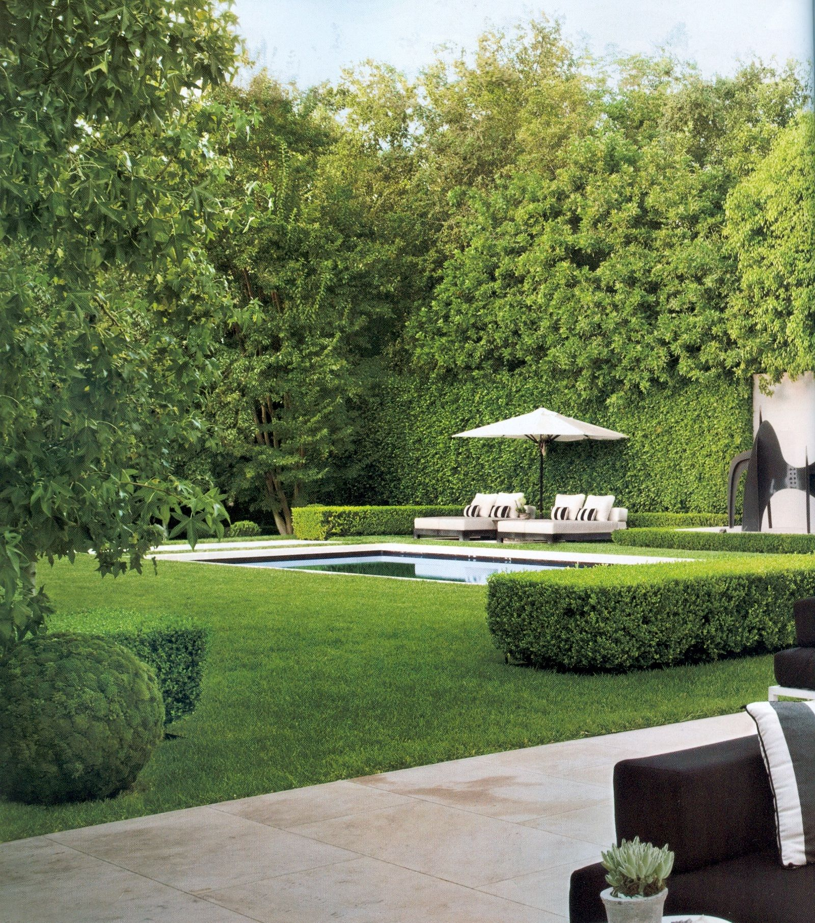 Very private backyard with open grass area and pool | My ... on Open Backyard Ideas id=43648