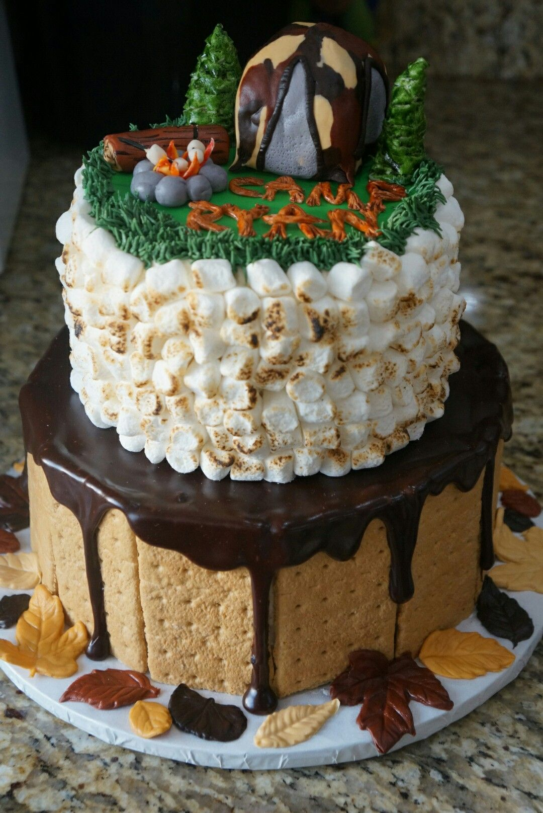 Camping Theme Smores Birthday Cake Boys Guys Ideas