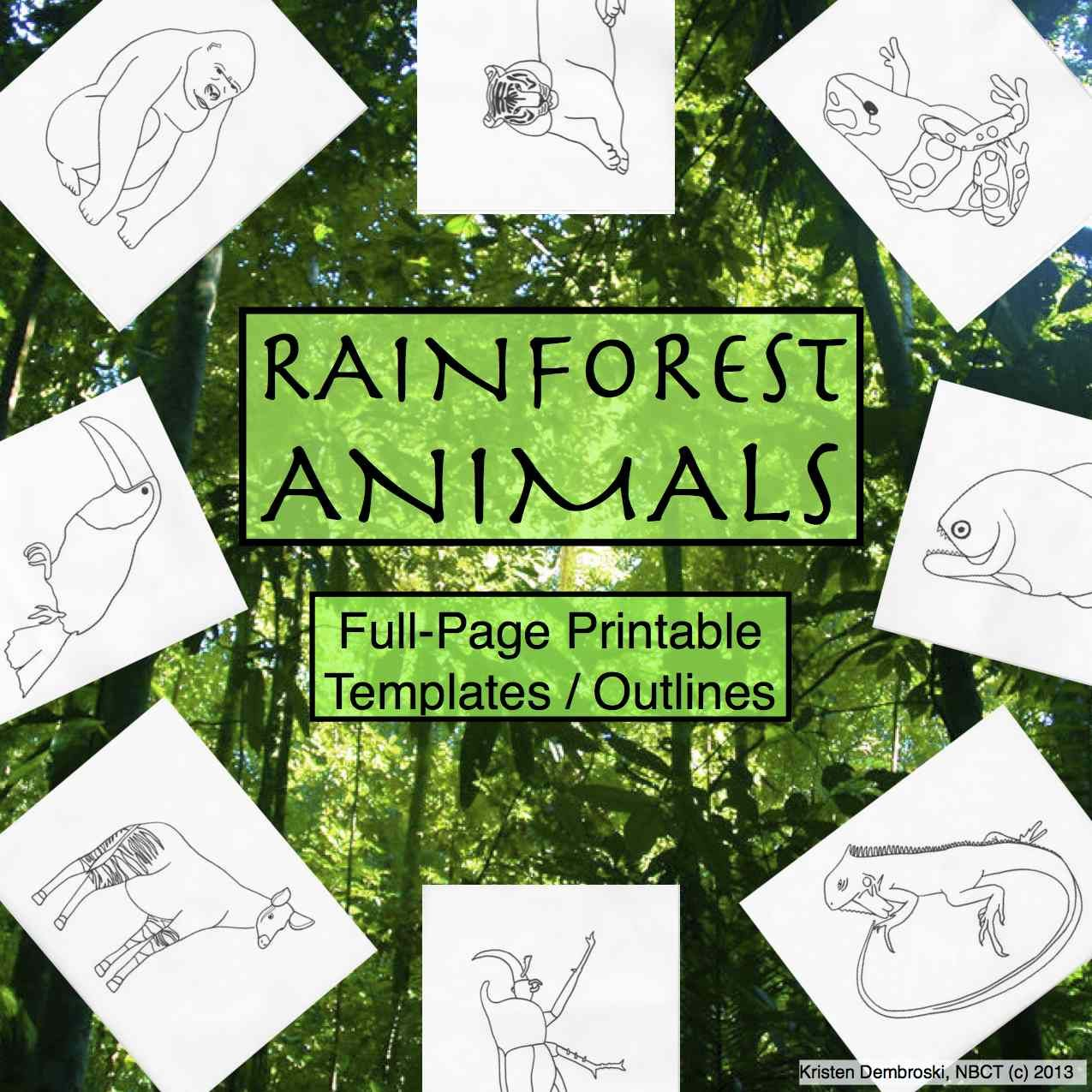 This Is A Pack Of 30 Blank Hand Drawn Rainforest Animals