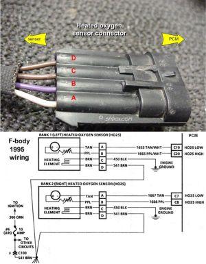 GM O2 Sensor Wiring Diagram | http:shbox1HO2S