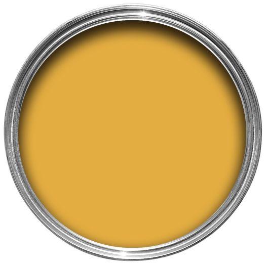 Dulux Kitchen Honey Mustard Matt Emulsion Paint 50ml Tester Pot Departments Diy At