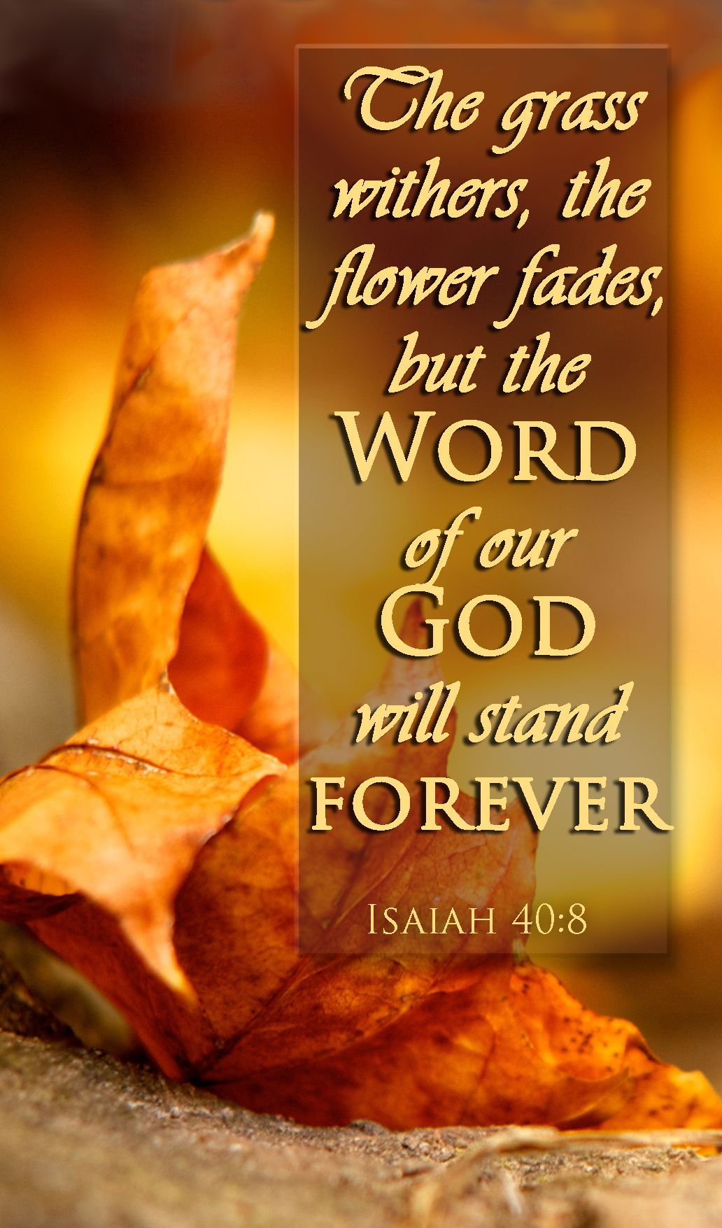 Isaiah 40 8 Bible Verse We Have Complete Assurance That