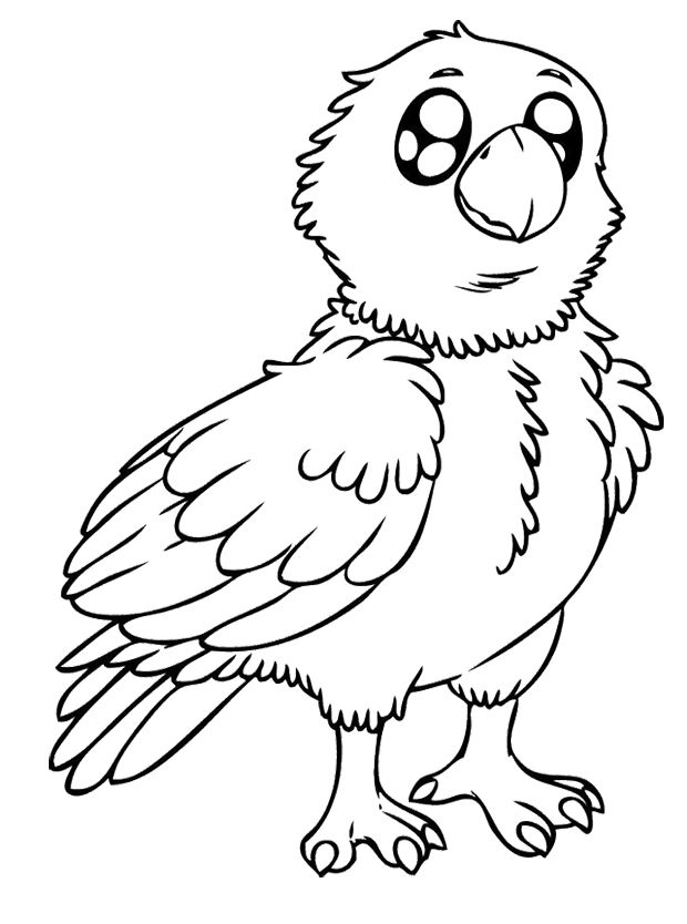 Eagles Kids Coloring Pages