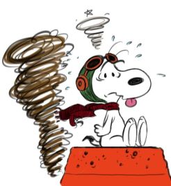 Image result for snoopy chaos