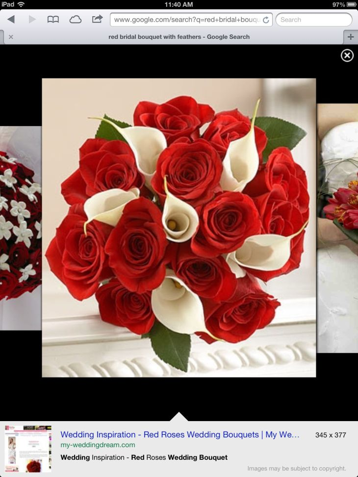 Red u white flowers  My Dream Wedding  Pinterest  White flowers