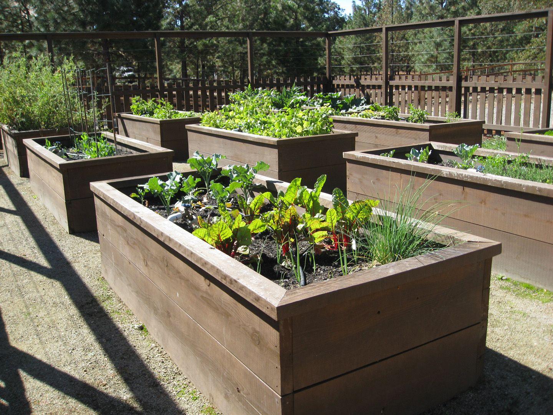 Raised Garden Beds on Pinterest   Raised Garden Beds ... on Backyard Raised Garden Bed Ideas id=74679
