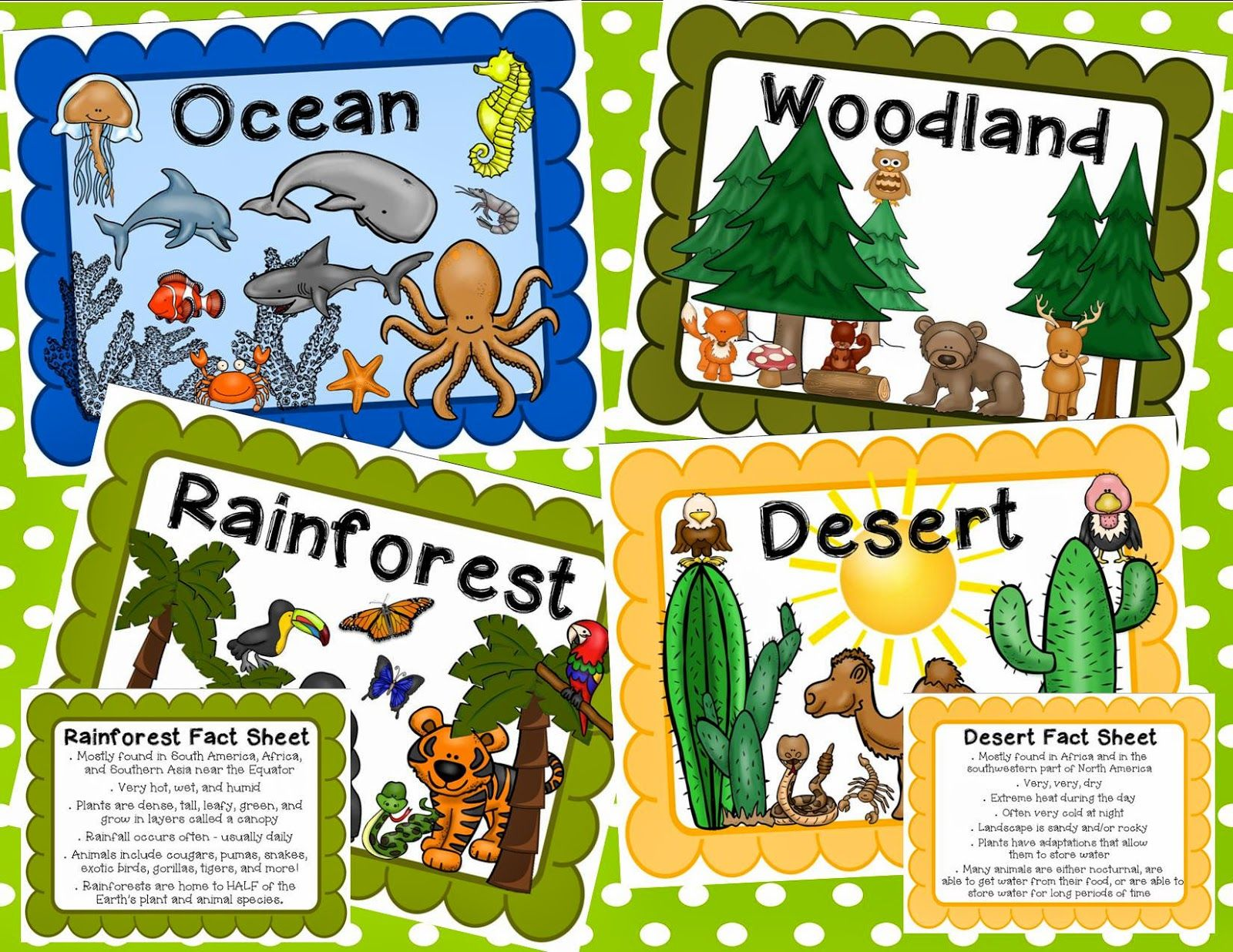 Simply Sweet Teaching Animal Classification And Habitats