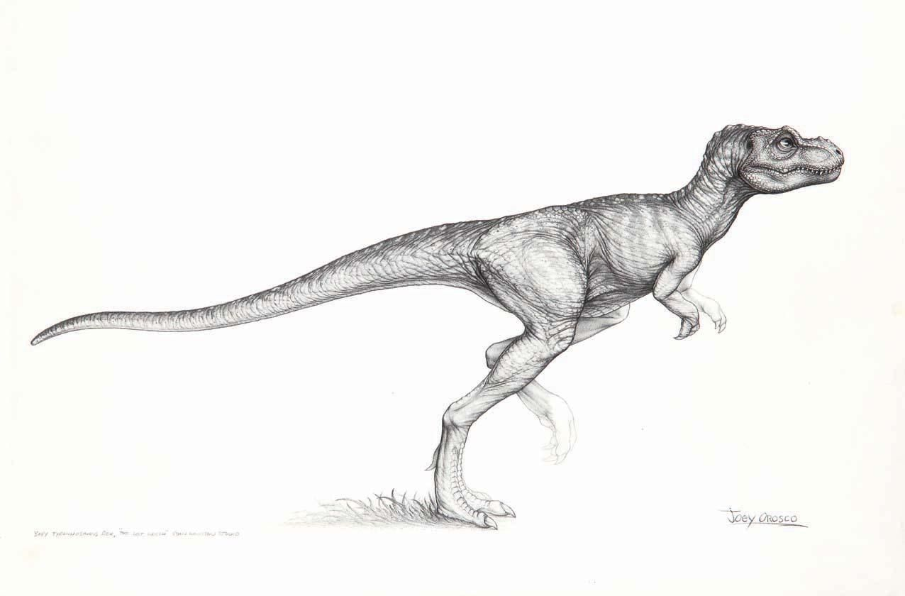 The Lost World Jurassic Park Baby Trex Drawing By Joey Orosco