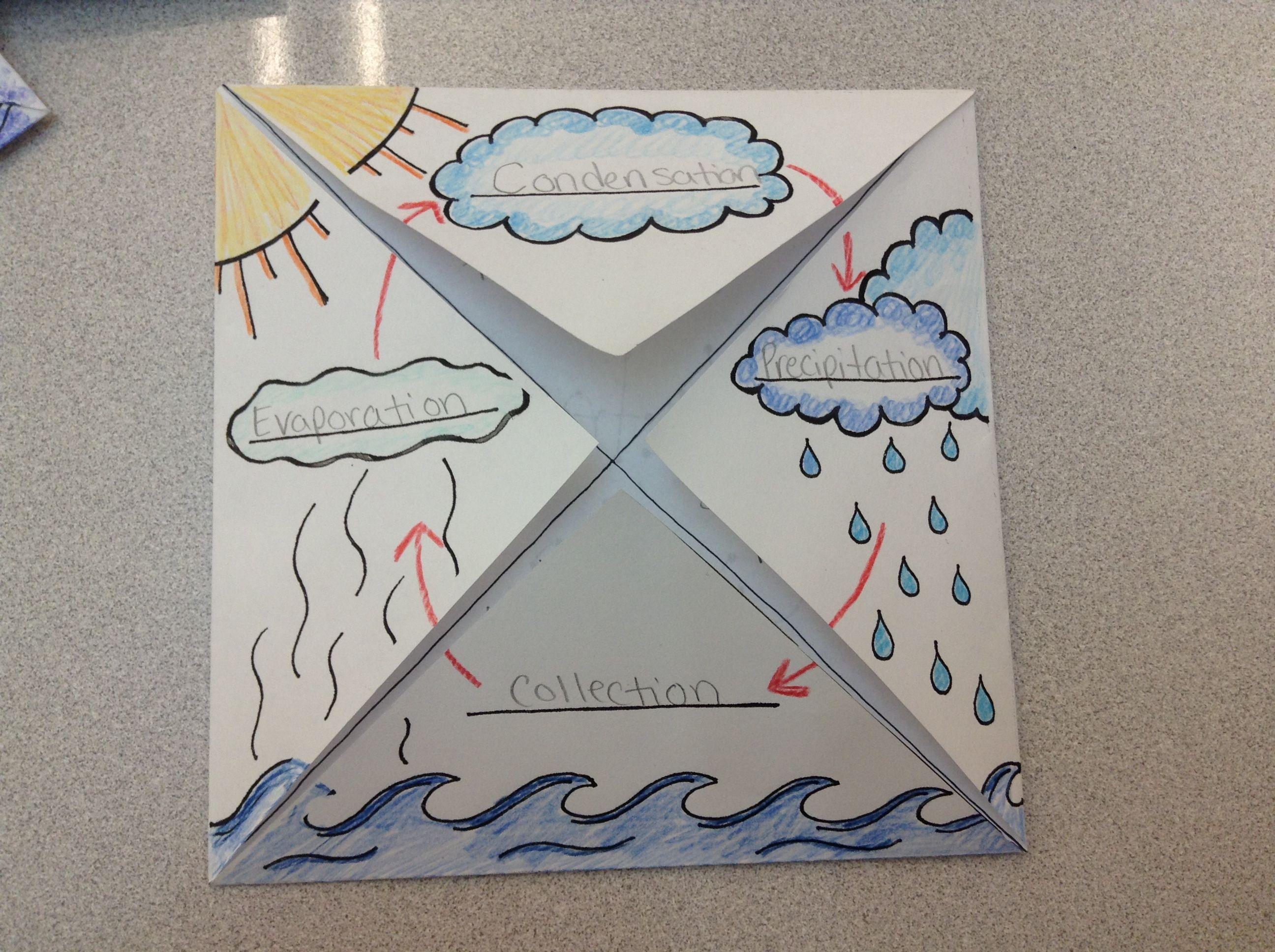 The Water Cycle Foldable Graphic Organizer 2nd Grade