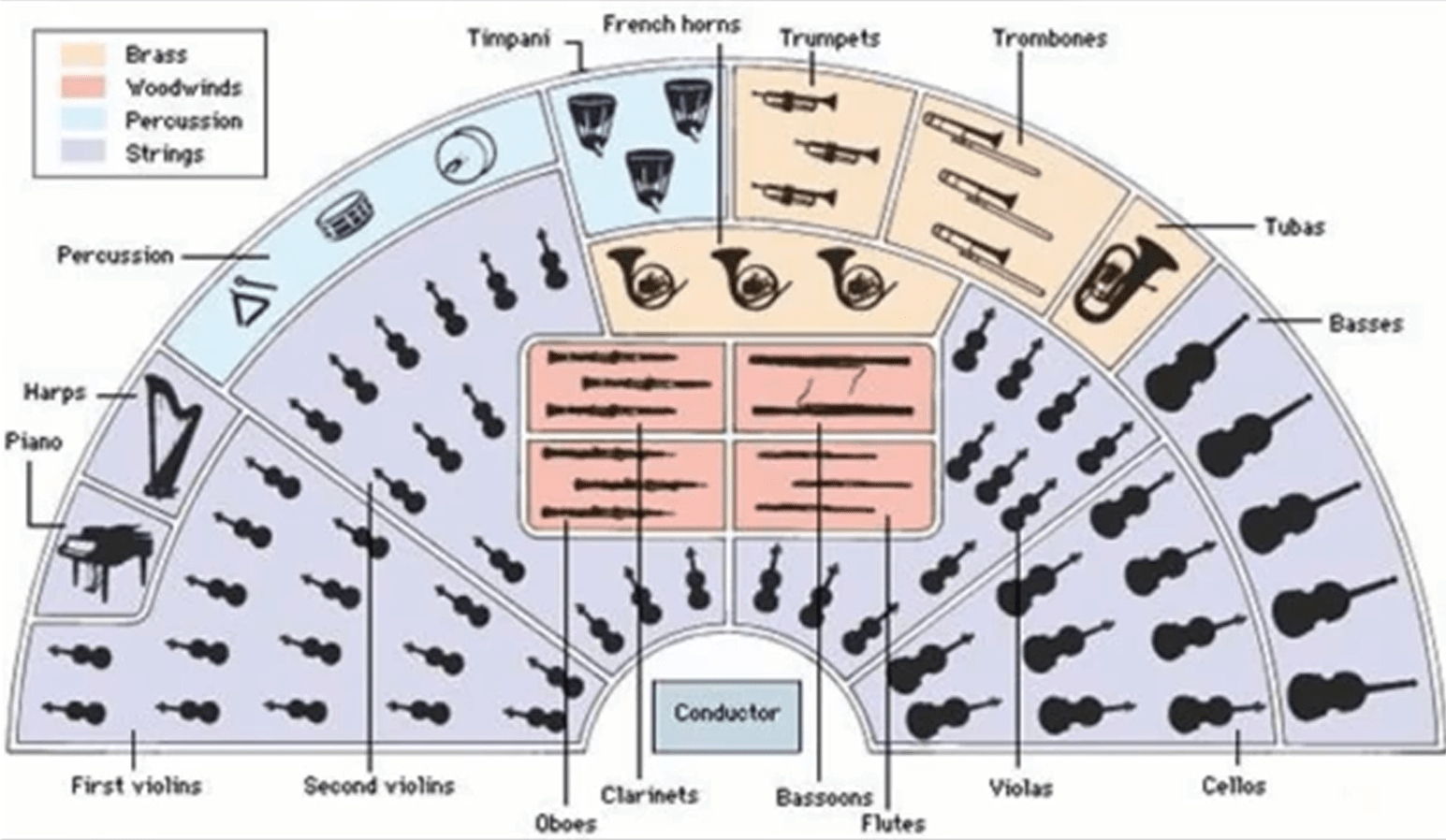 Orchestra Infographic