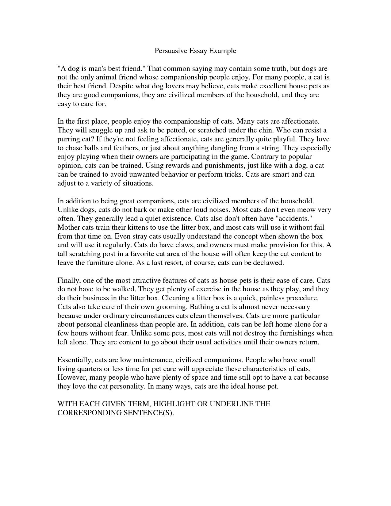 Type my engineering argumentative essay computer forensic resume example