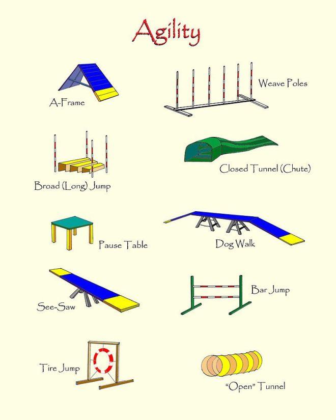 Agility equipment by brad a thomas dog agility