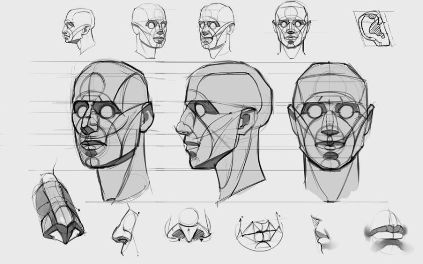 constructing the head reilly method - Google Search ...