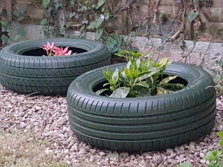 Upcycled Tyres Enclose evergreens  AnmolikA  Pinterest  Evergreen