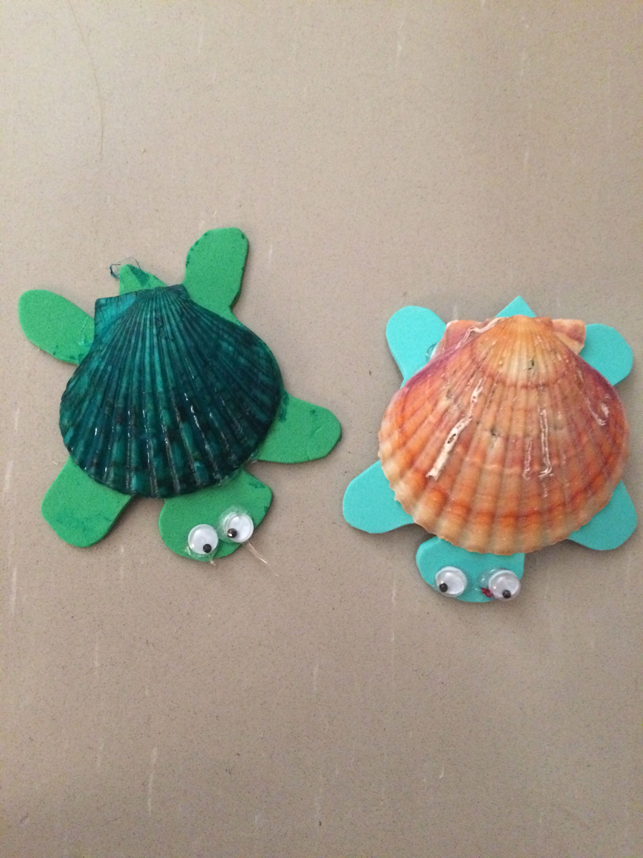 Cute Turtle Craft Made With Sea Shells And Foam Easy For