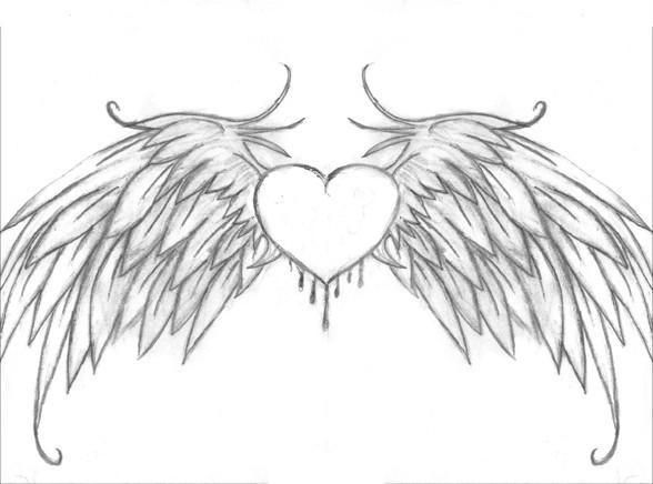 Drawing Heart Of With Bird Wings Tattoo