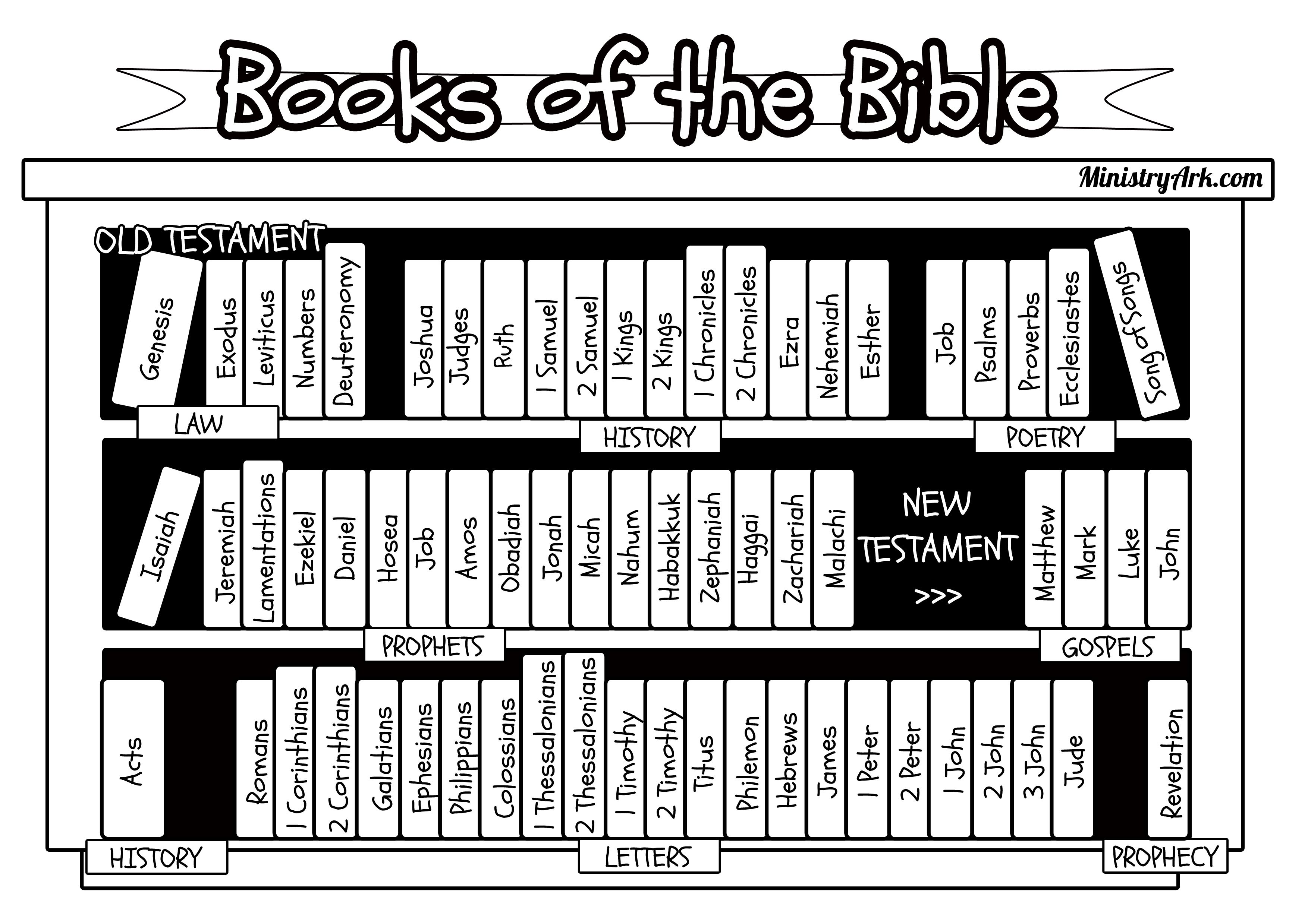 Books Of The Bible Bookcase