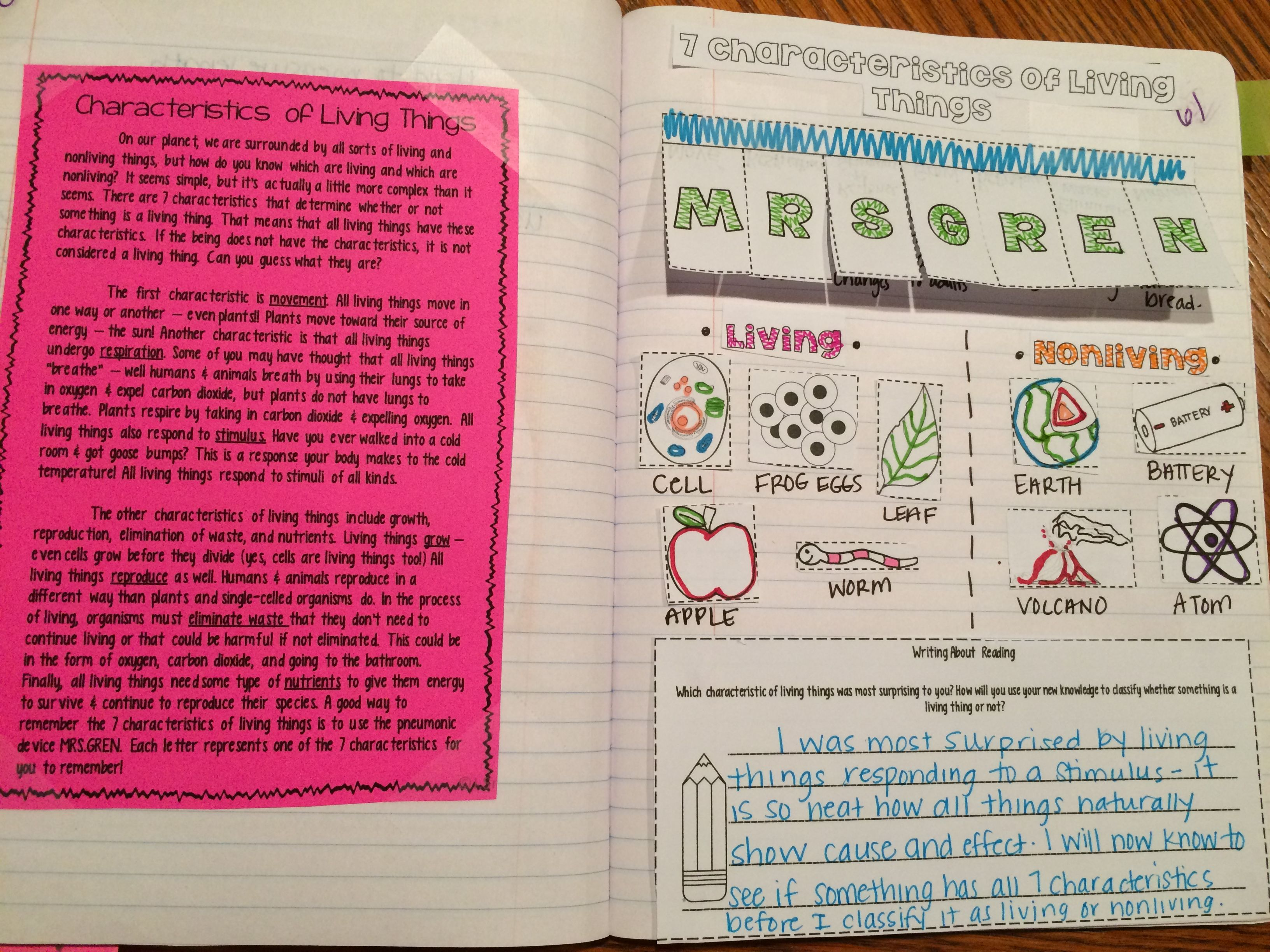Living Things Reading Comprehension Interactive Notebook