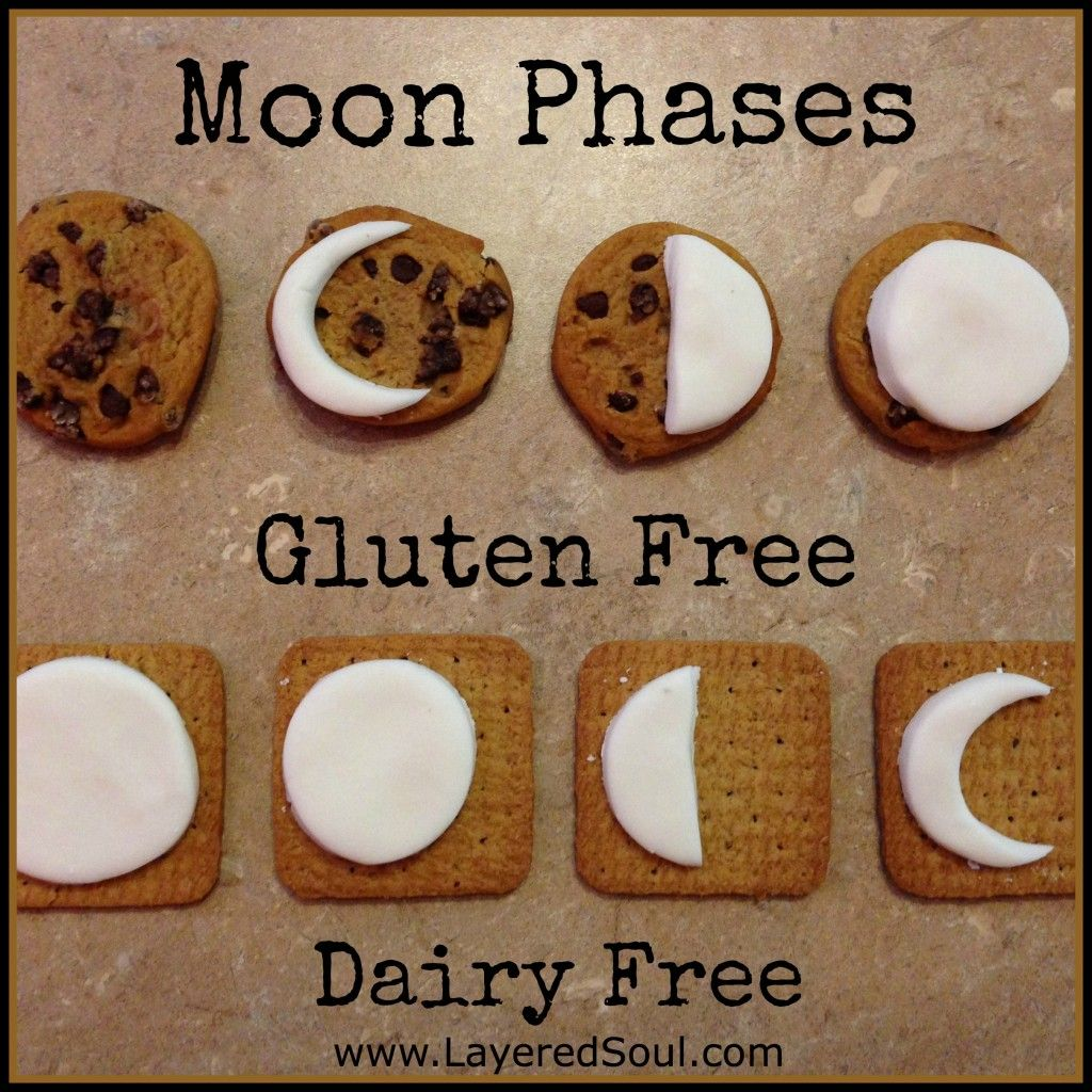 Moon Phase Cookie Project Gluten And Dairy Free