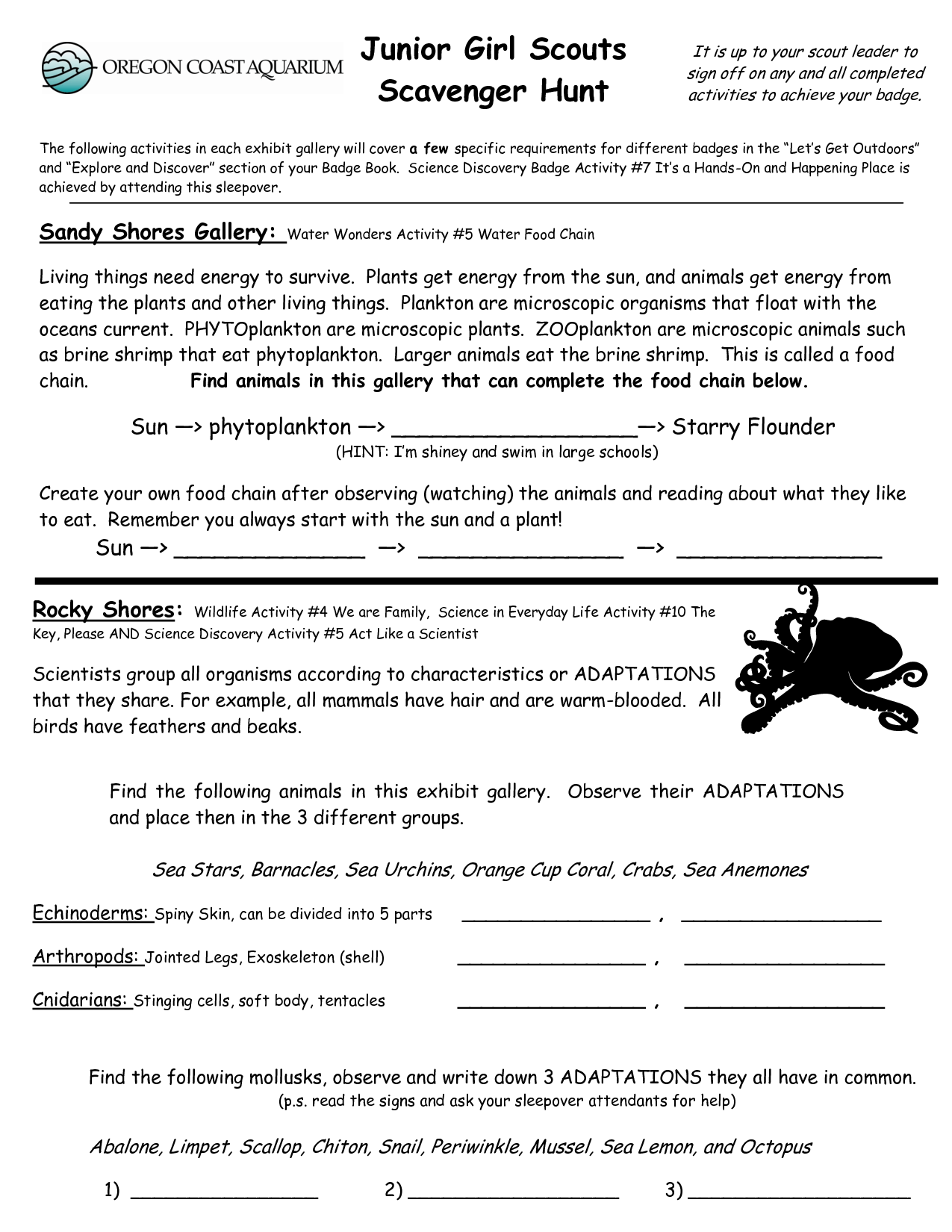Junior Girl Scout Badge Worksheets