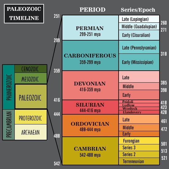 Paleozoic Era Major Events and Important Facts History