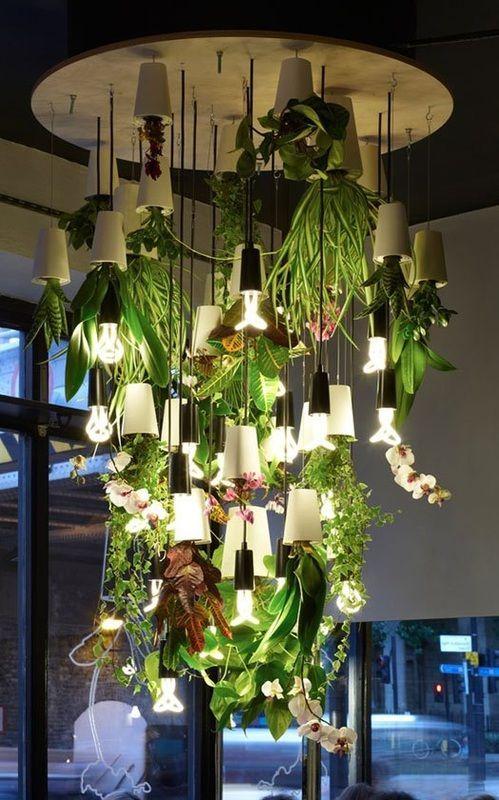 Afbeeldingsresultaat Voor Plant Chandelier