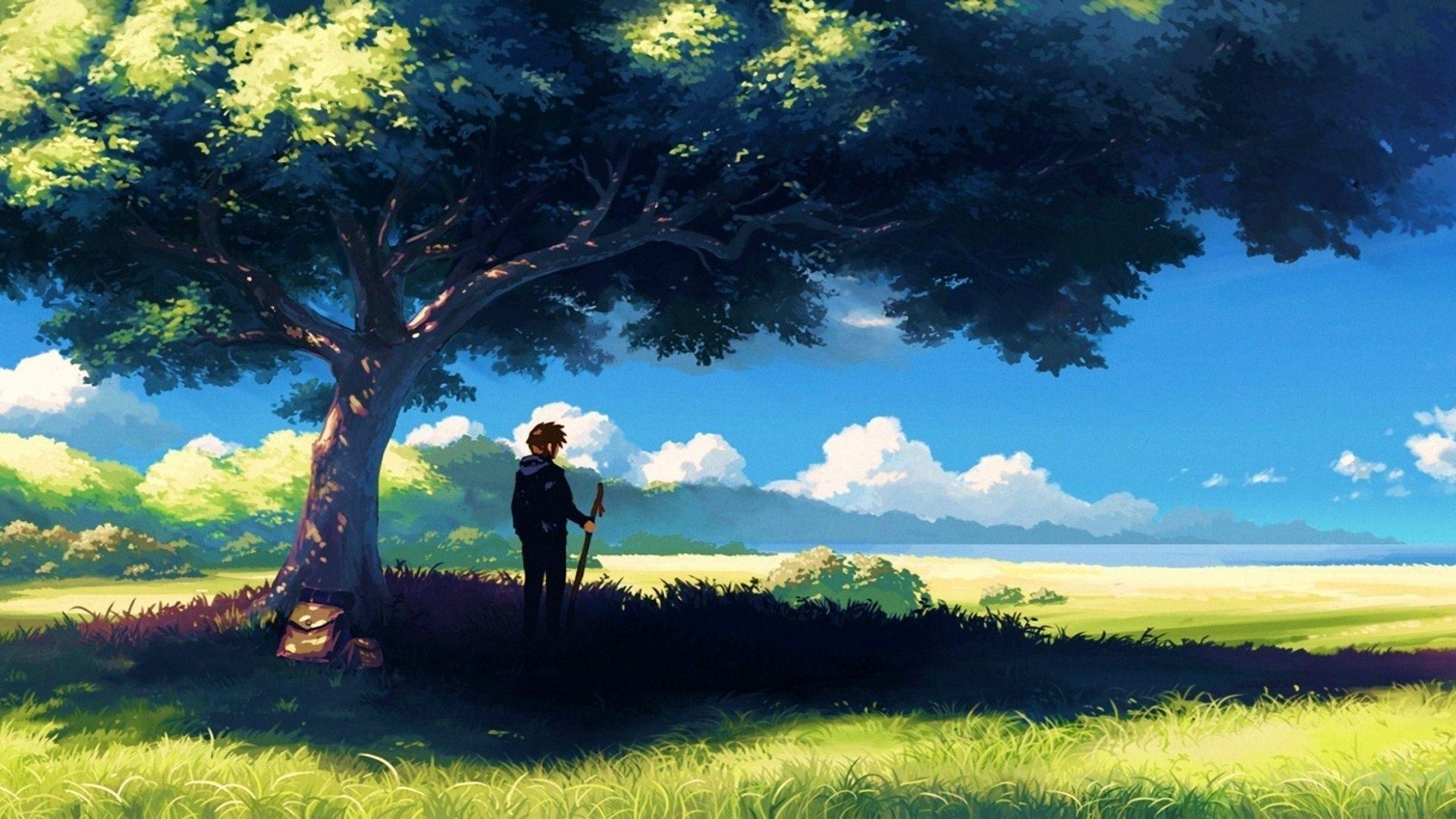 1920x1080 anime, scenery, boy under tree, anime scenery wallpapers