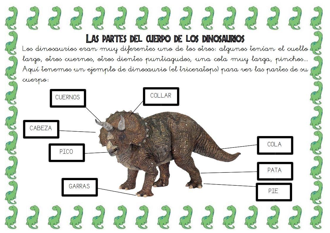 3 Las Partes Del Cuerpo De Los Dinosaurios 793