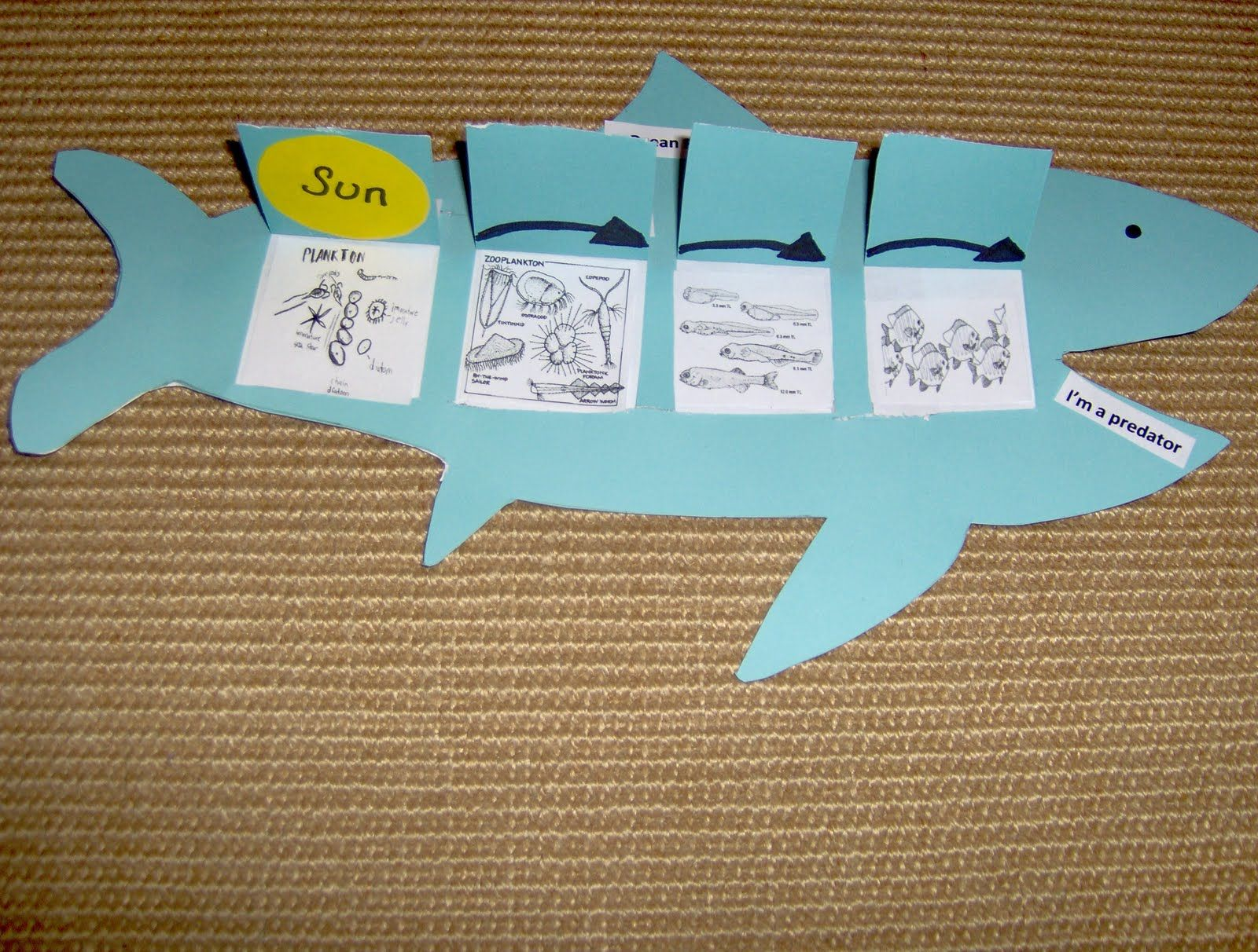 Bookish Ways In Math And Science Unit Resource Portfolio Oceans