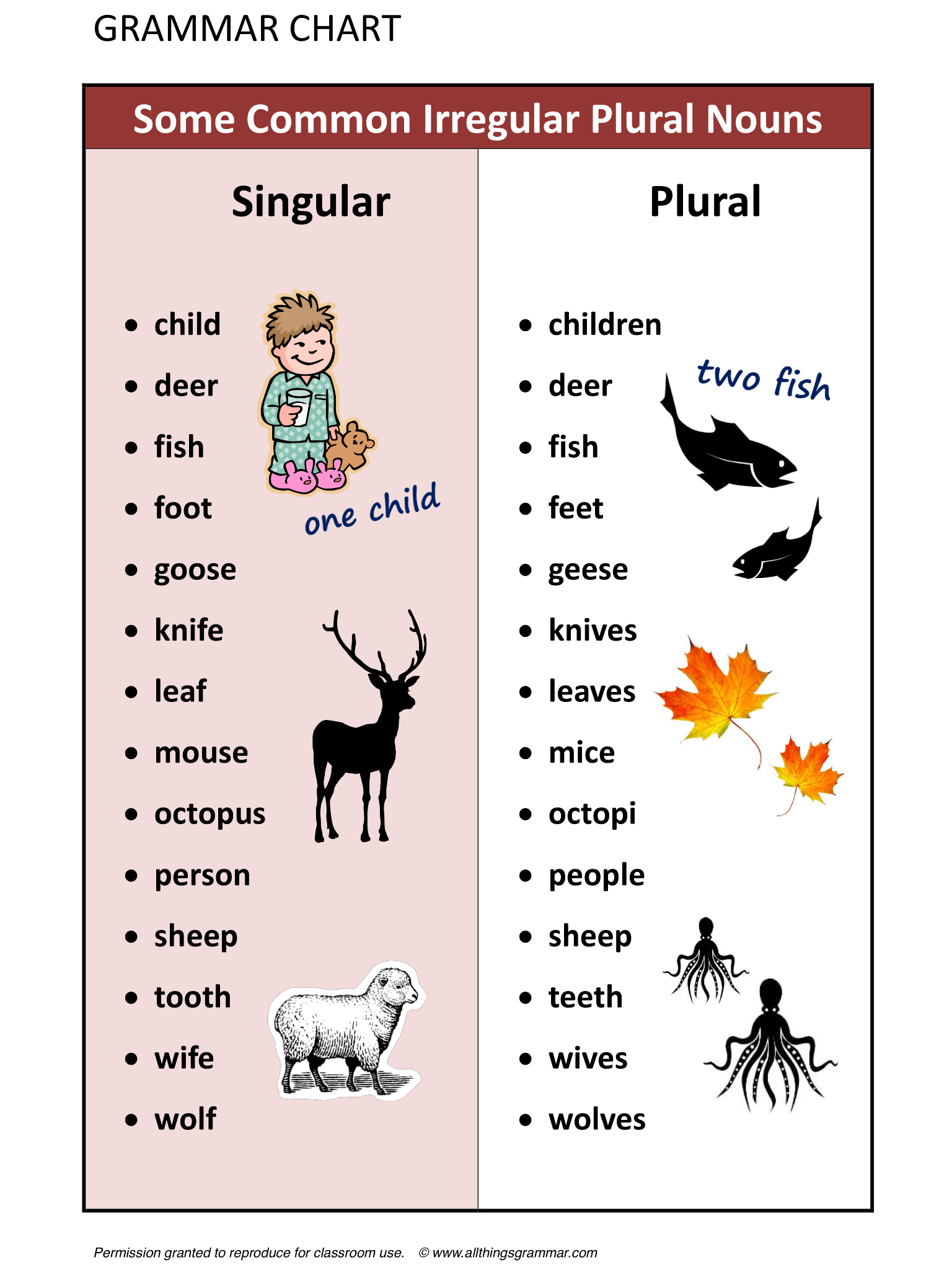 Some Common Irregular Plural Nouns