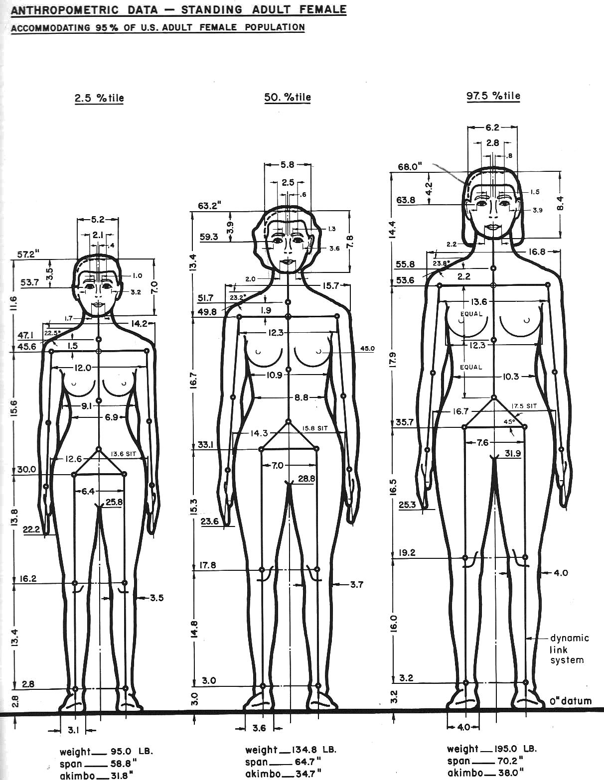 Data Stature Women A 1 0