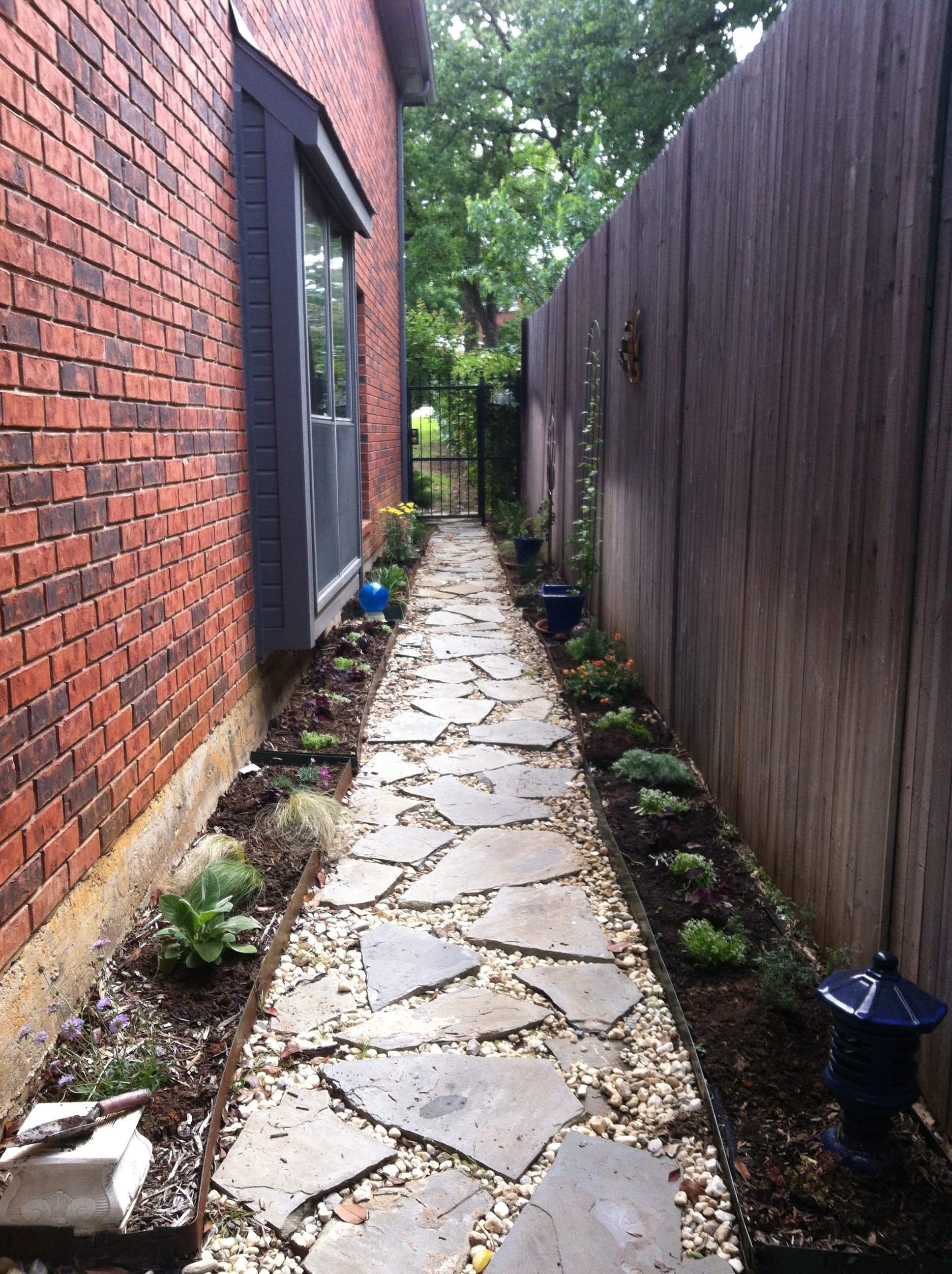 Just planted: A straight and narrow walkway down a sunny ... on Side Yard Walkway Ideas  id=61511
