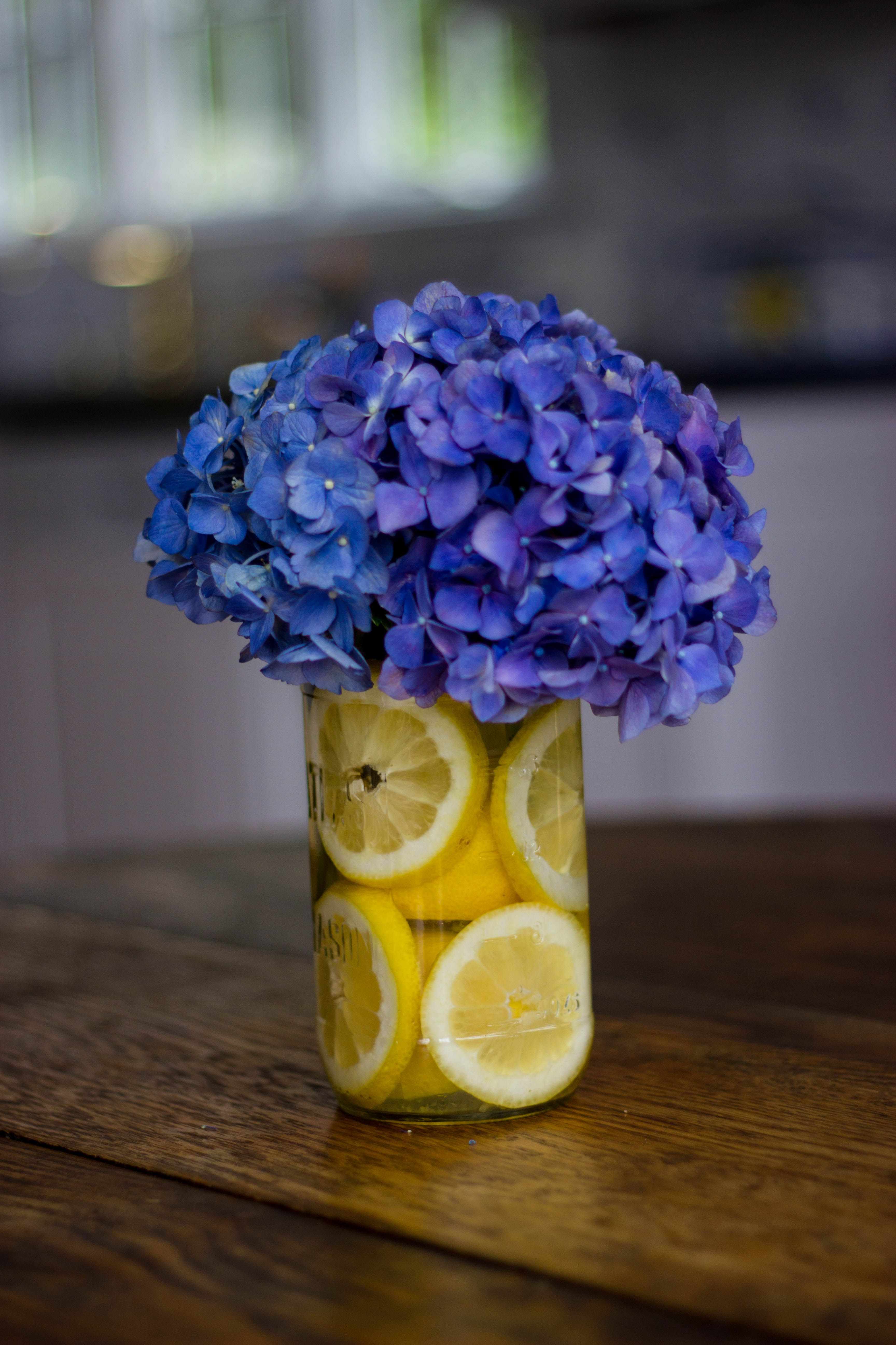 hydrangea in mason jar cute wedding center piece but on sweet dreams for your home plants decoration precautions and options id=76921