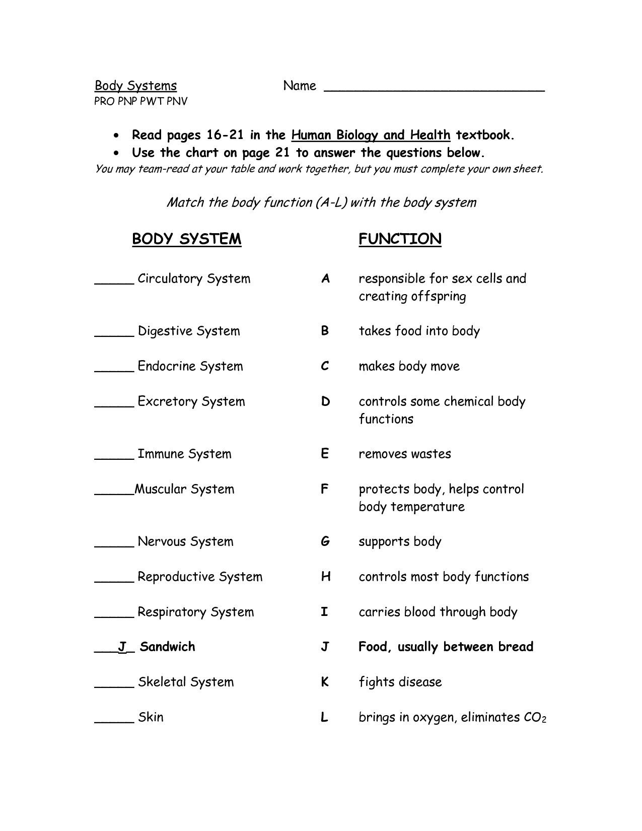 Body Systems And Functions Worksheets
