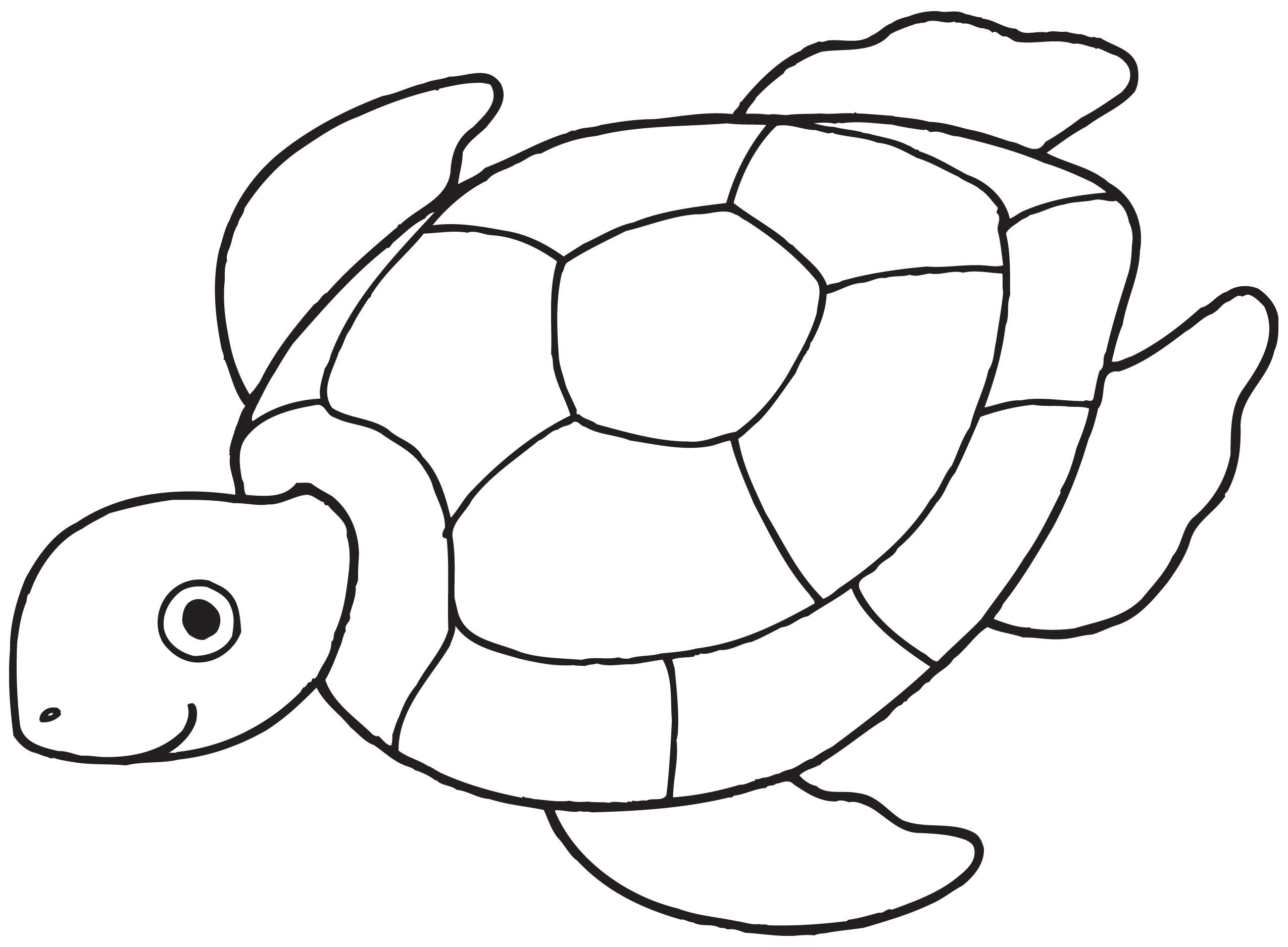 Sea Turtle Coloring Pages For Kids With Free Printable For