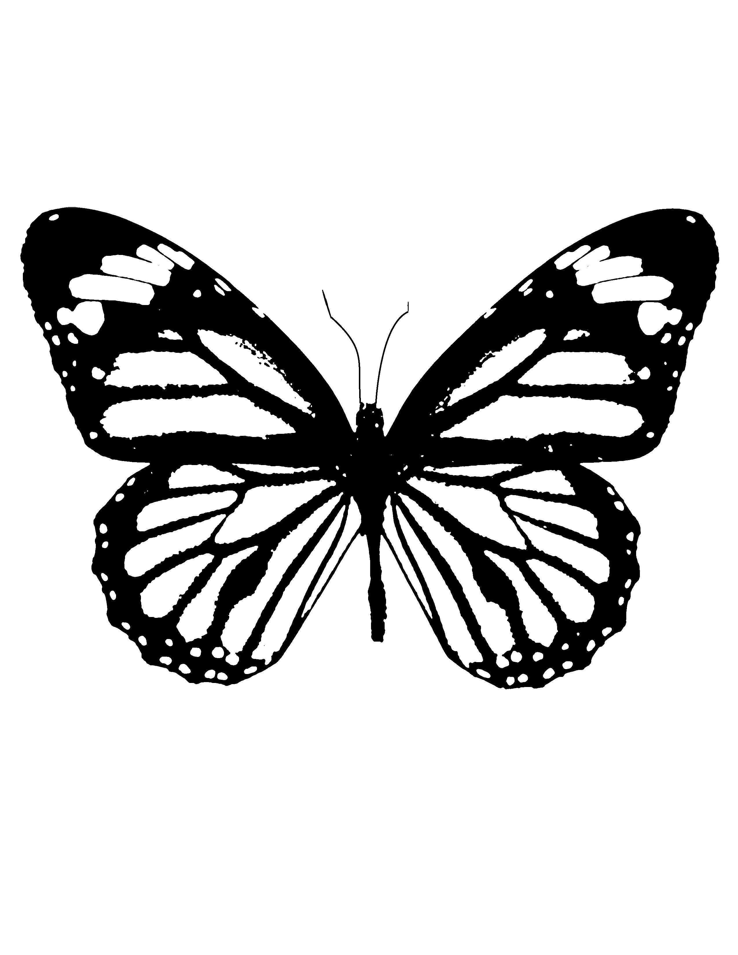 Download Your Free Butterfly Stencil Here Save Time And