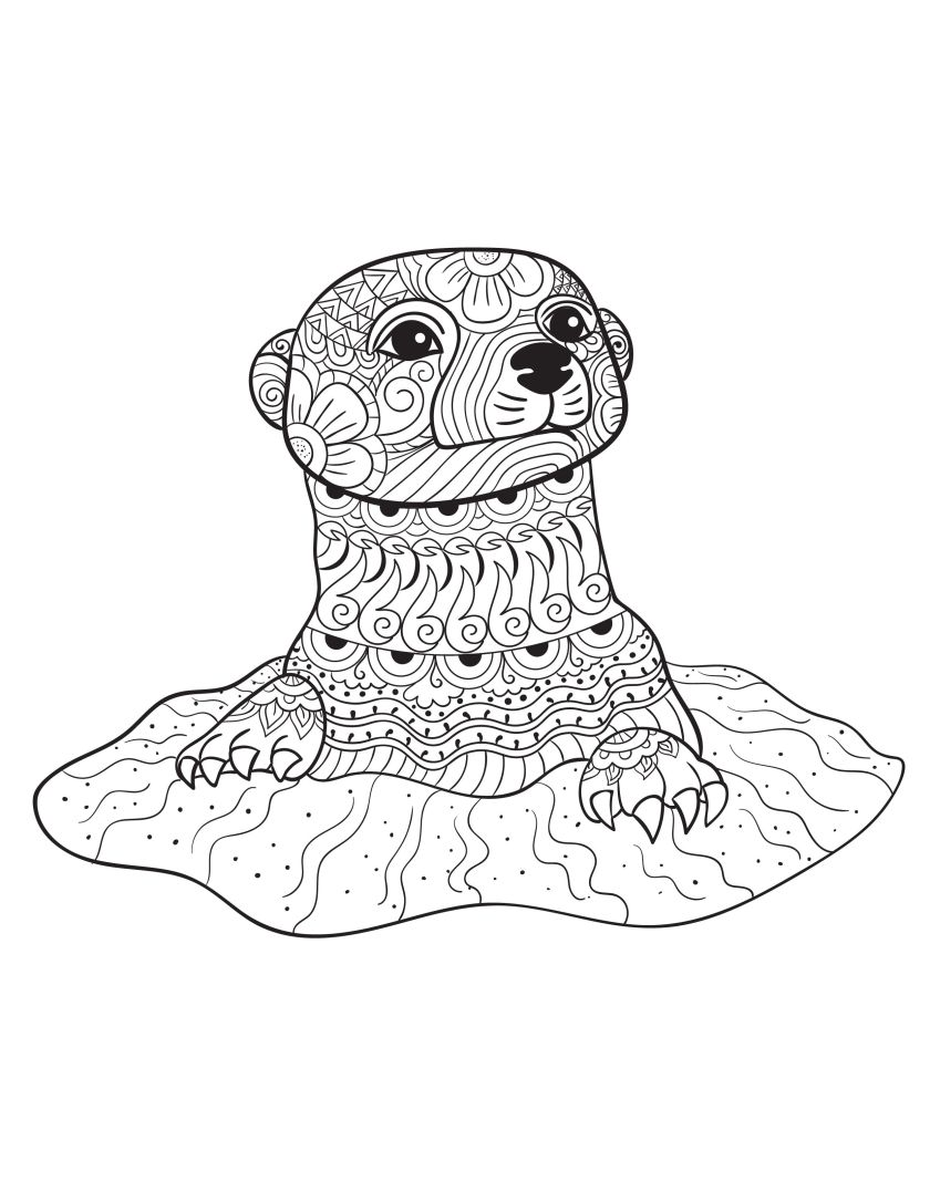 an otter from animals  an adult coloring book  adult