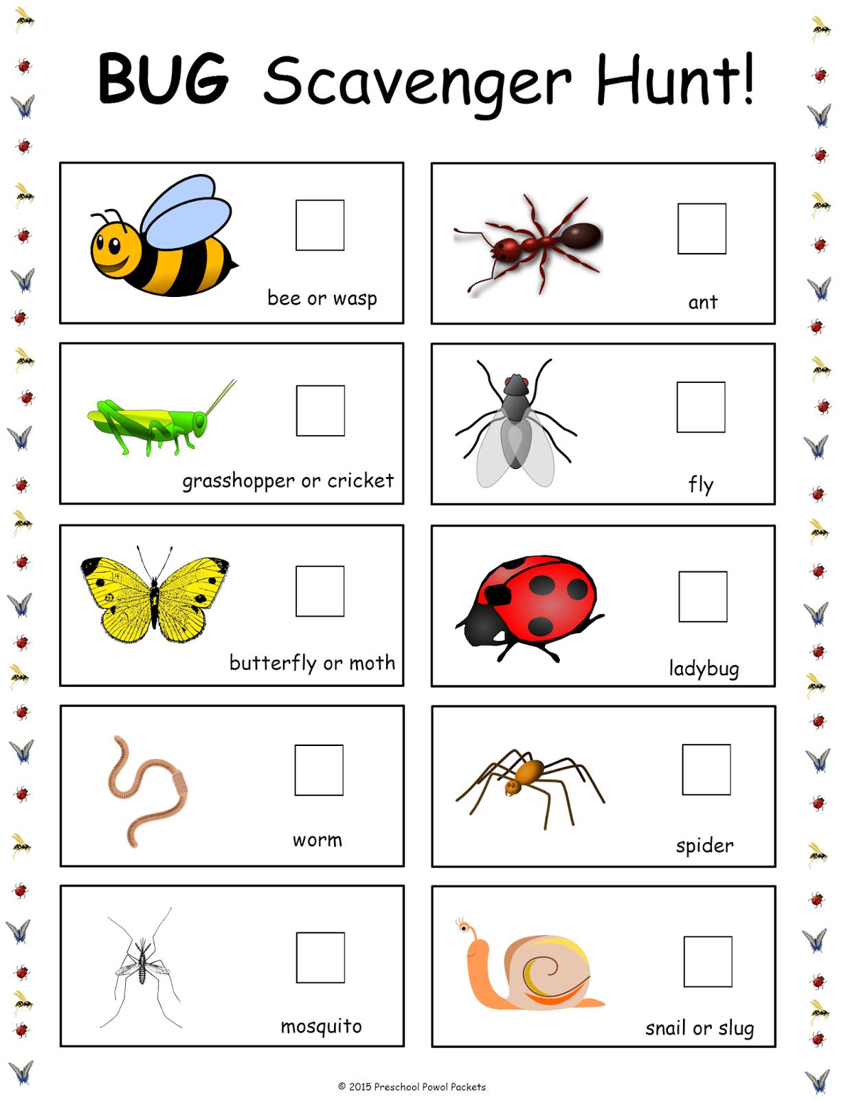 Free Bug Scavenger Hunt