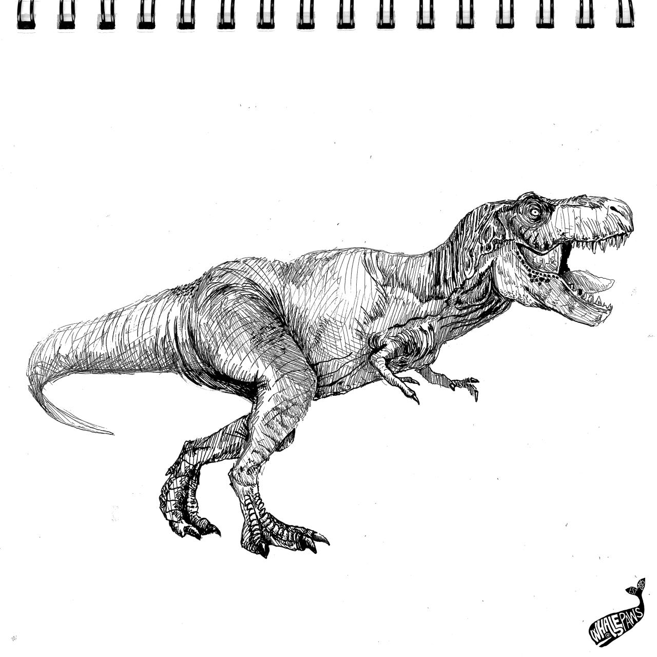 T Rex Art Drawing Trex Dinosaur Animal Animals