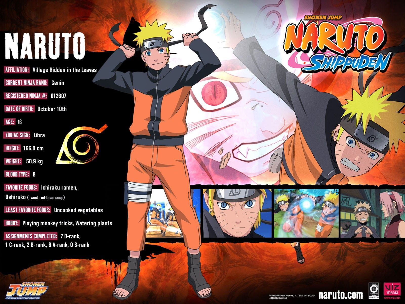 android :naruto shippuden free watch all episodes video online